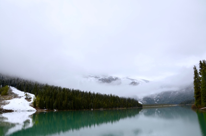 Emerald Lake BC | A New Perspective
